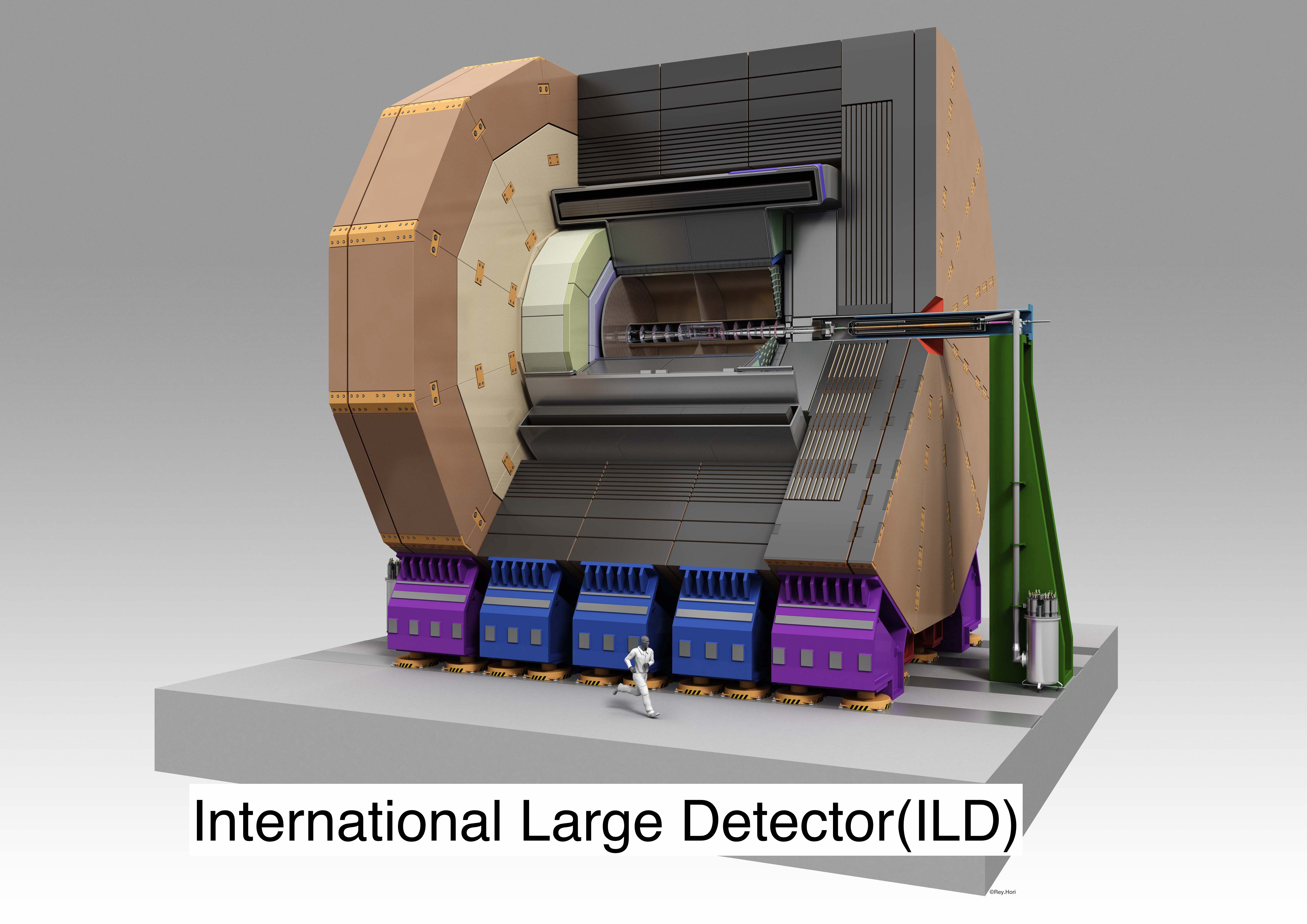 International Large Detector