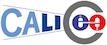 CALICE国際共同研究